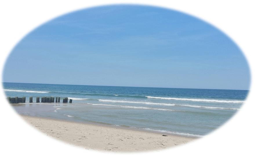 Long Beach Island Flood Insurance | LBI NJ Real Estate